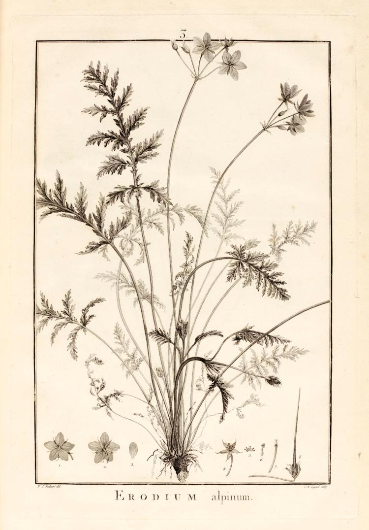 L'HERITIER. GERANIOLOGIA. 1787