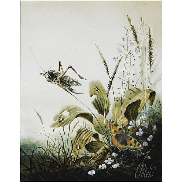 - Eugène Peters , born 1946 Sprinkhaan op Graspluim oil on panel