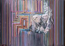 ATTILA SZŰCS | Snowy Owl