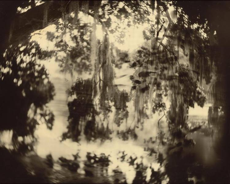 SALLY MANN B. 1951