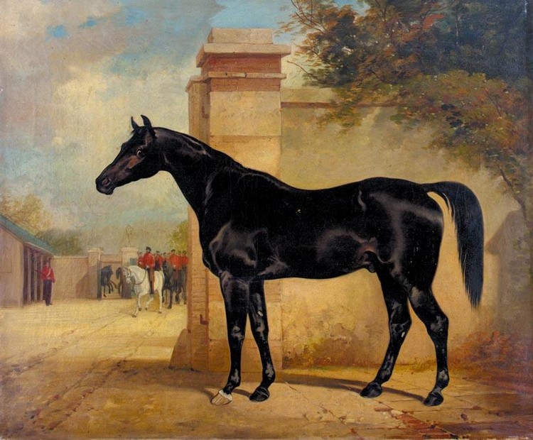 HENRY BARRAUD 1811 - 1874 A DARK BAY CHARGER, PROBABLY THE PROPERTY OF THE HON. THOMAS FERMOR