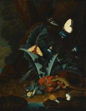 JOHANN FALCH | Forest floor still life with snails, a lizard, a grasshopper, moths and a snake