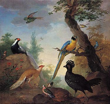 *AERT SCHOUMAN (1710-1792)