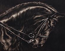 ROBERT LONGO   Study of Stallion's Arc