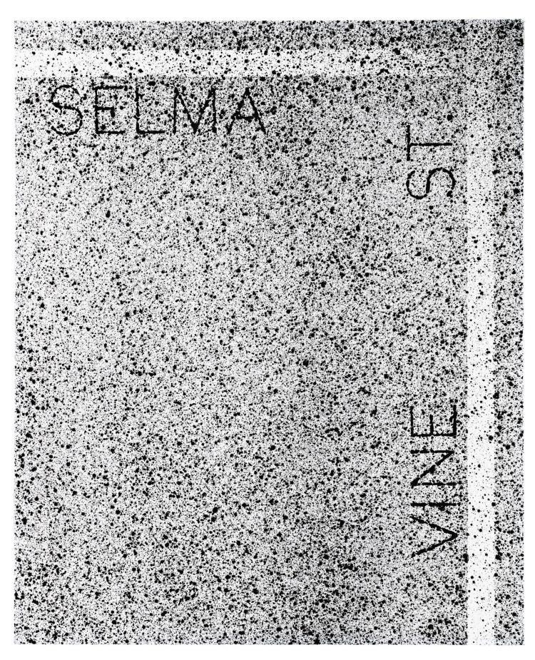 ED RUSCHA | Selma and Vine St.