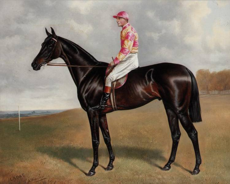 ALFRED WHEELER, 1851-1932