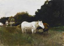ANDREW WYETH | Horse Flies