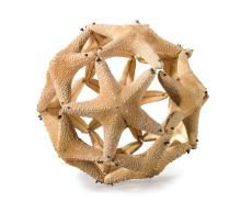 MARÍA FERNANDA CARDOSO (B. 1963)   Orange Starfish Ball