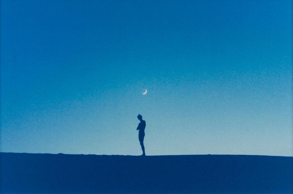 RYAN MCGINLEY | Untitled