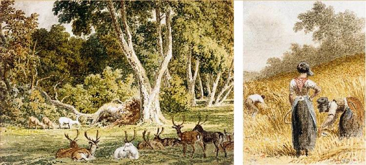 VARIOUS PROPERTIES ROBERT HILLS 1769-1844 A GROUP OF WATERCOLOURS