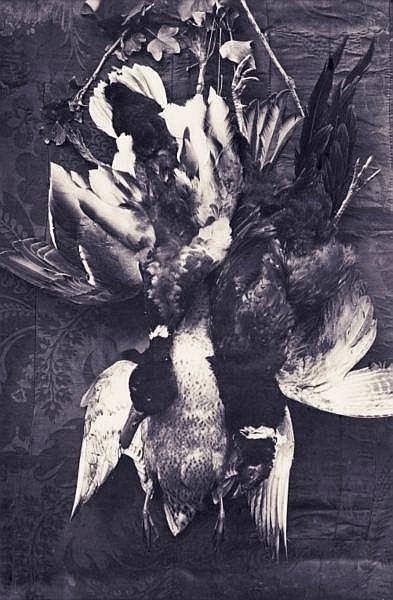 Charles Nègre (1820-1880) , Nature morte, Tableau de chasse, vers 1855-60