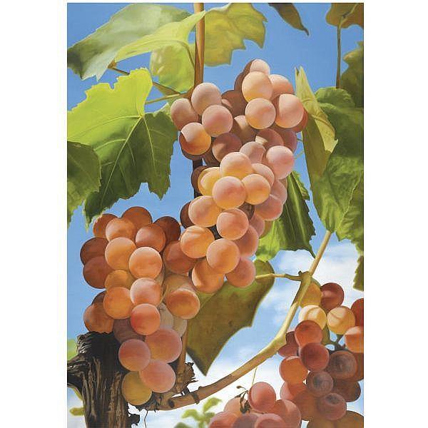 - Mustafa Hulusi , B. 1971   Grapes I   oil on canvas
