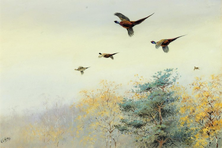GEORGE EDWARD LODGE 1860-1954 HIGH FLYERS, PHEASANTS IN FLIGHT
