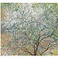 Boris Israilovich Anisfeld , 1879-1973 flowering tree oil on canvas   , Boris Anisfel'D, Click for value