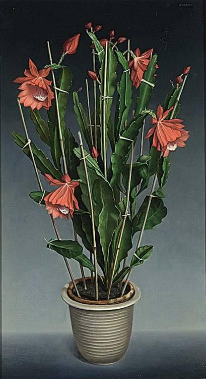 HUGO BERTEN DUTCH 1894-1959 A FLOWERING CACTUS