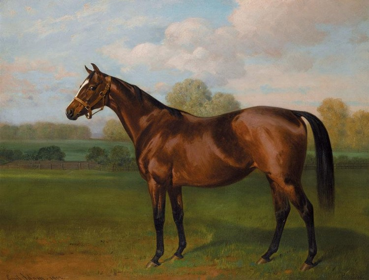 EMIL ADAM 1843-1924