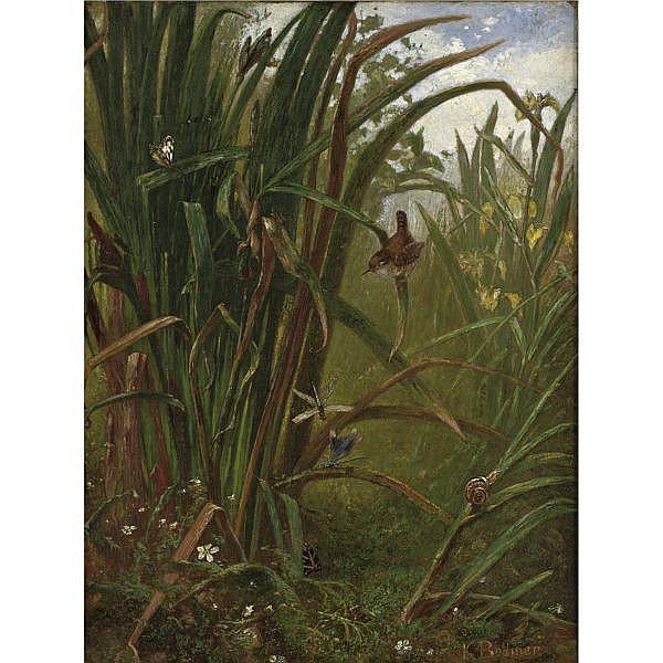 Karl Bodmer 1809-1893 , Marsh Interior oil on canvas