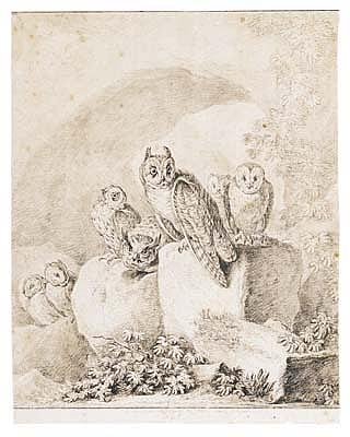 *Johann Elias Ridinger (1698-1767) a group of owls seated on rocks.  Indistinctly signed (?), dated