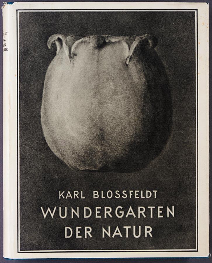 KARL BLOSSFELDT, 1865-1932 WUNDERGARTEN DER NATUR. NEUE BILDOKUMENTE SCHÖNER PFLANZENFORMEN.