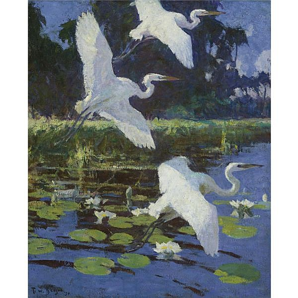 Frank W. Benson 1862-1951 , Herons and Lilies oil on canvas