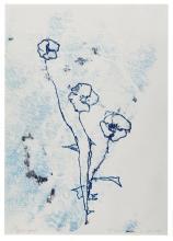 TRACEY EMIN, R.A. | Poppys
