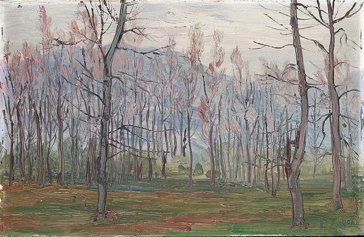 ERNST ZUPPINGER 1875-1948 SALEGGI (BEI LOCARNO), 1908 ÖL AUF KARTON UNTEN RECHTS MONOGRAMMIERT UND