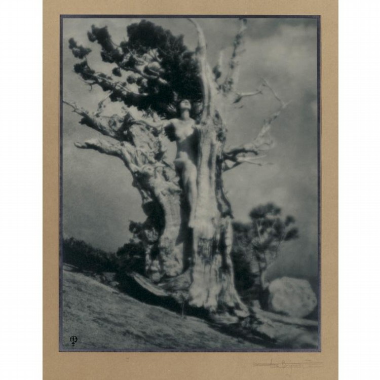 ANNE W. BRIGMAN 1869-1950