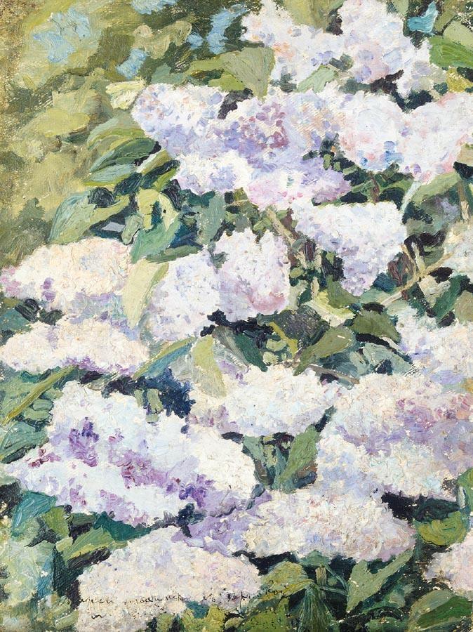 f - NIKOLAI NIKOLAEVICH SAPUNOV, 1880-1912