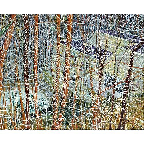 s - Peter Doig , The Architect's Home in the Ravine