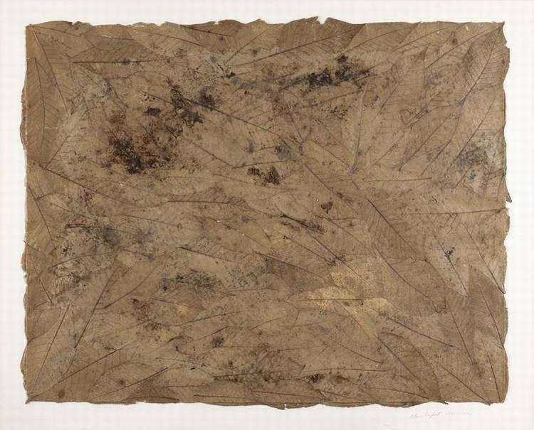 ALAN SONFIST ACTIVE CIRCA 1946-1971 ANDOVER LEAVES, 1971
