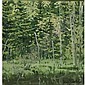 NEIL WELLIVER B. 1929, Neil Gavin Welliver, Click for value