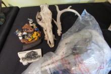 Box Lot of Antler, Skulls, Disney Boneyard