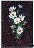 KÖRBER, WILHELM, (1901-1991) Acht Kamillenblüten