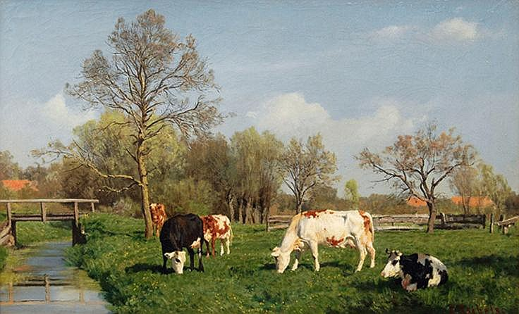 Cows grazing by a Creek