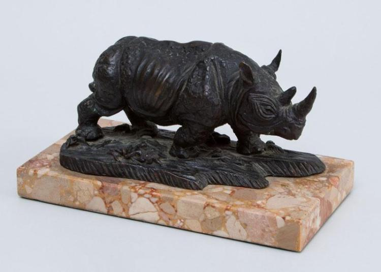 SOUTH AMERICAN SCHOOL: RHINO