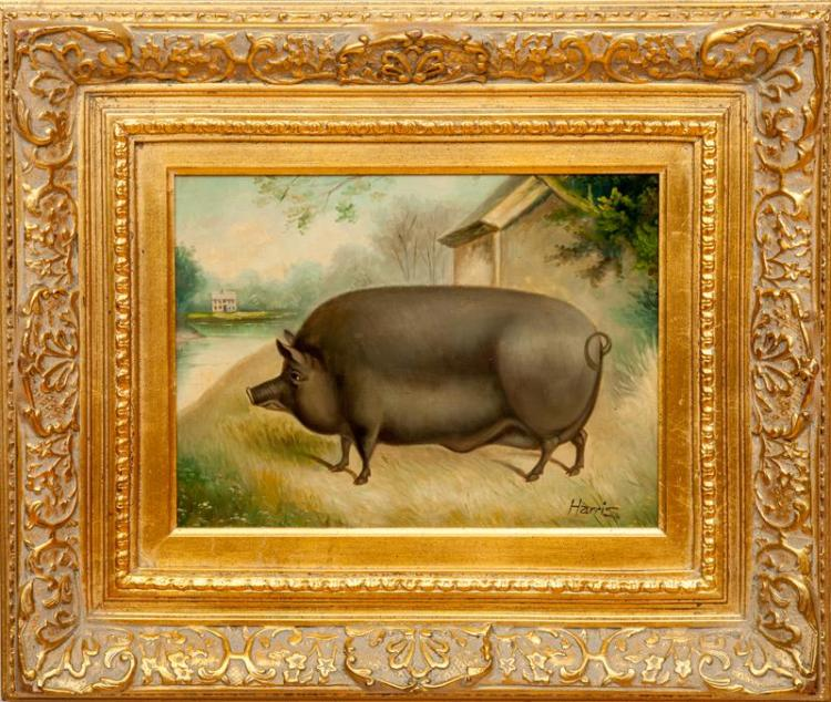 20th Century School: Hog