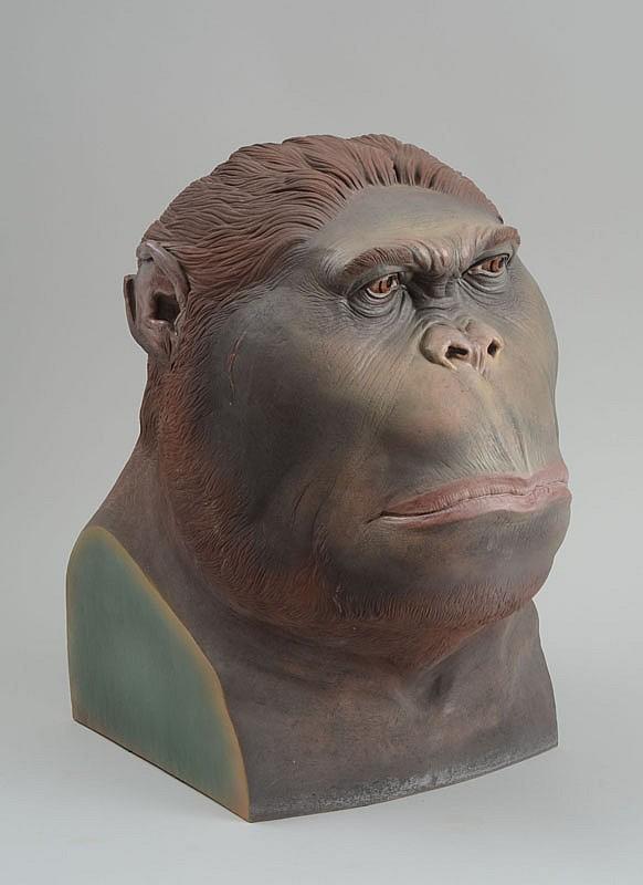 Anthony Bennett: Bust of a Gorilla