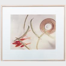 Jo Ann Callis (b.1940): Goldfish and Stringbeans