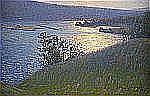 - CARL JOHANSSON 1863-1944 Soldis över norrländskt