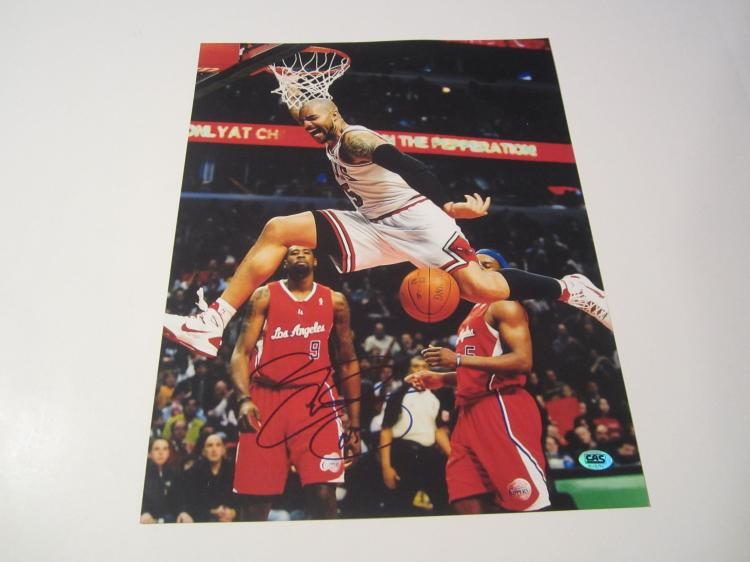 Carlos Boozer Chicago Bulls signed autographed 11x14 Photo C