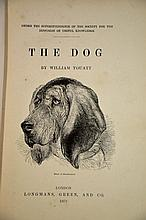 1879 Book on the Dog