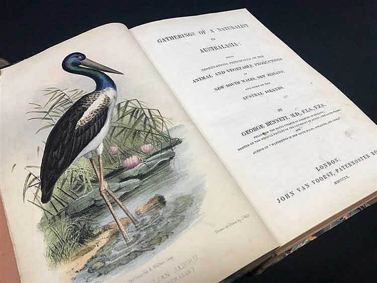 Gatherings of A Naturalist in Australasia by Bennett Published 1860 Platypus