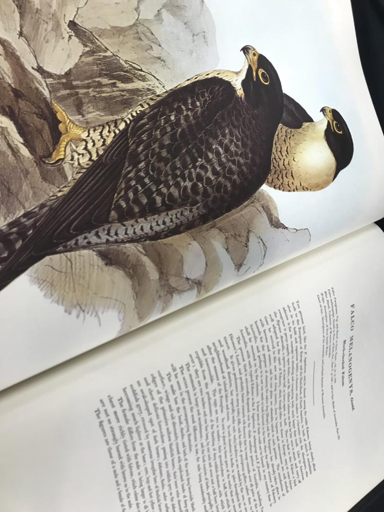 Gould's Birds of Australia 8 Vol Facsimile