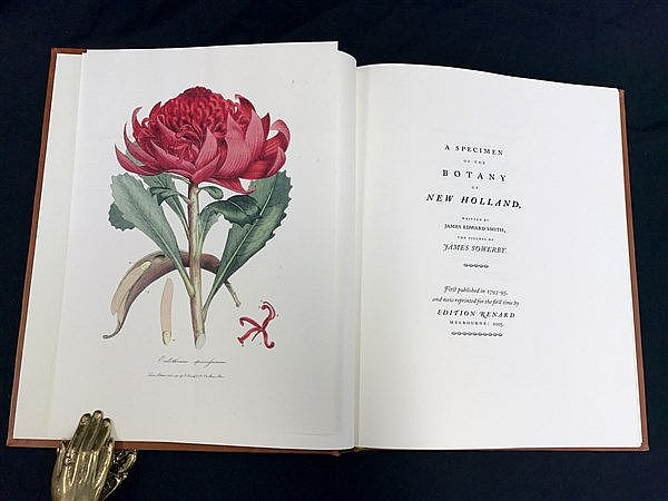 Botany of New Holland