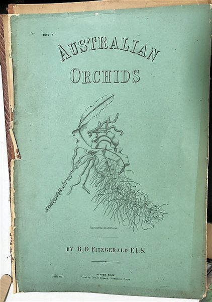 Fitzgerald's Australian Orchids (19th Century)