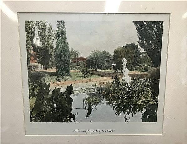 Adelaide Botanical Gardens Phillip Stephan Coloured View