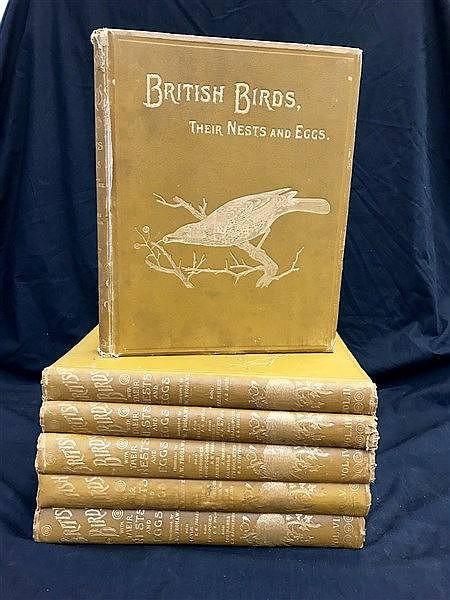 Fine Cloth Binding British Birds (19th Century) x 6