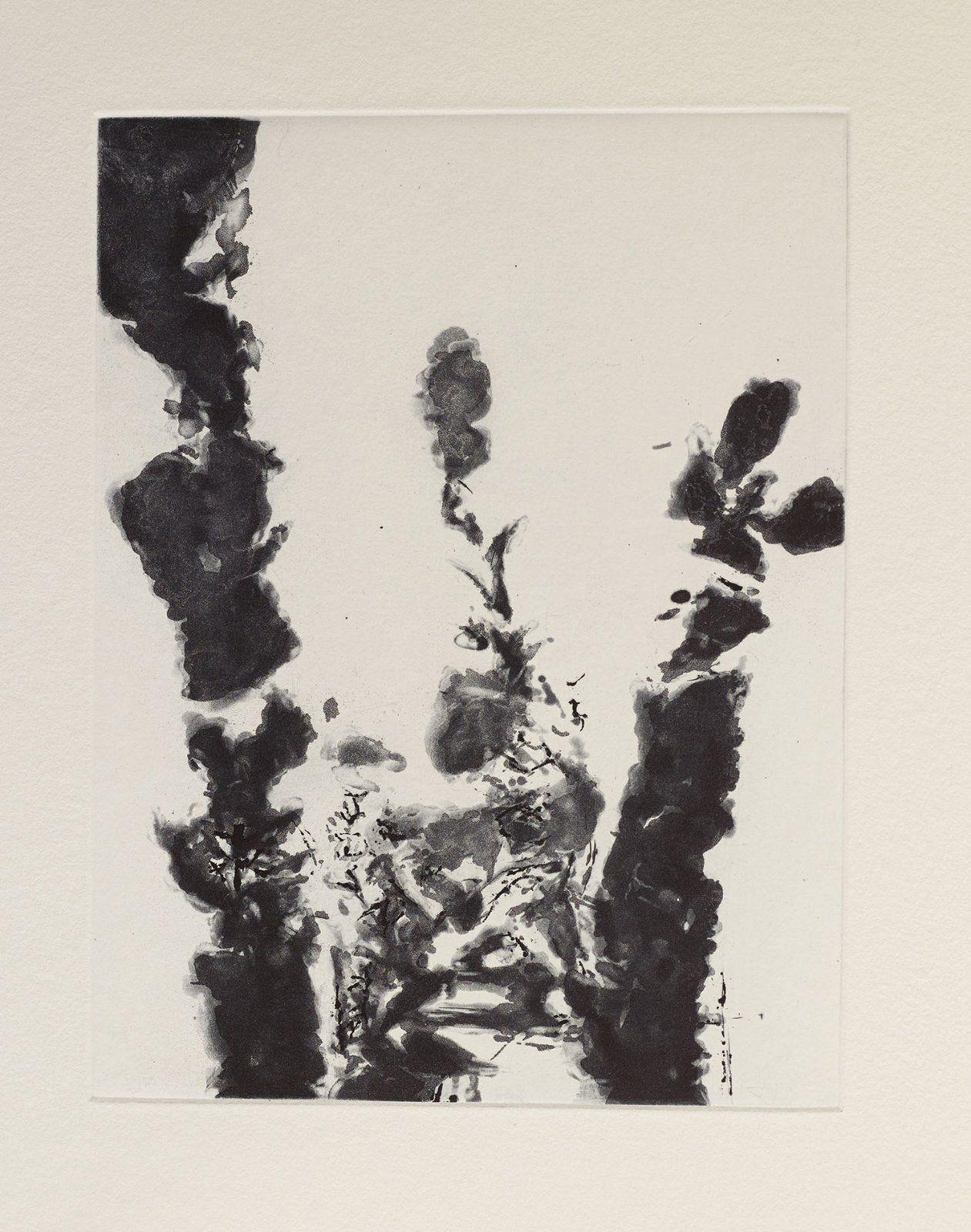 Zao Wou-Ki - XXIV Sonnets de Shakespeare, 1994