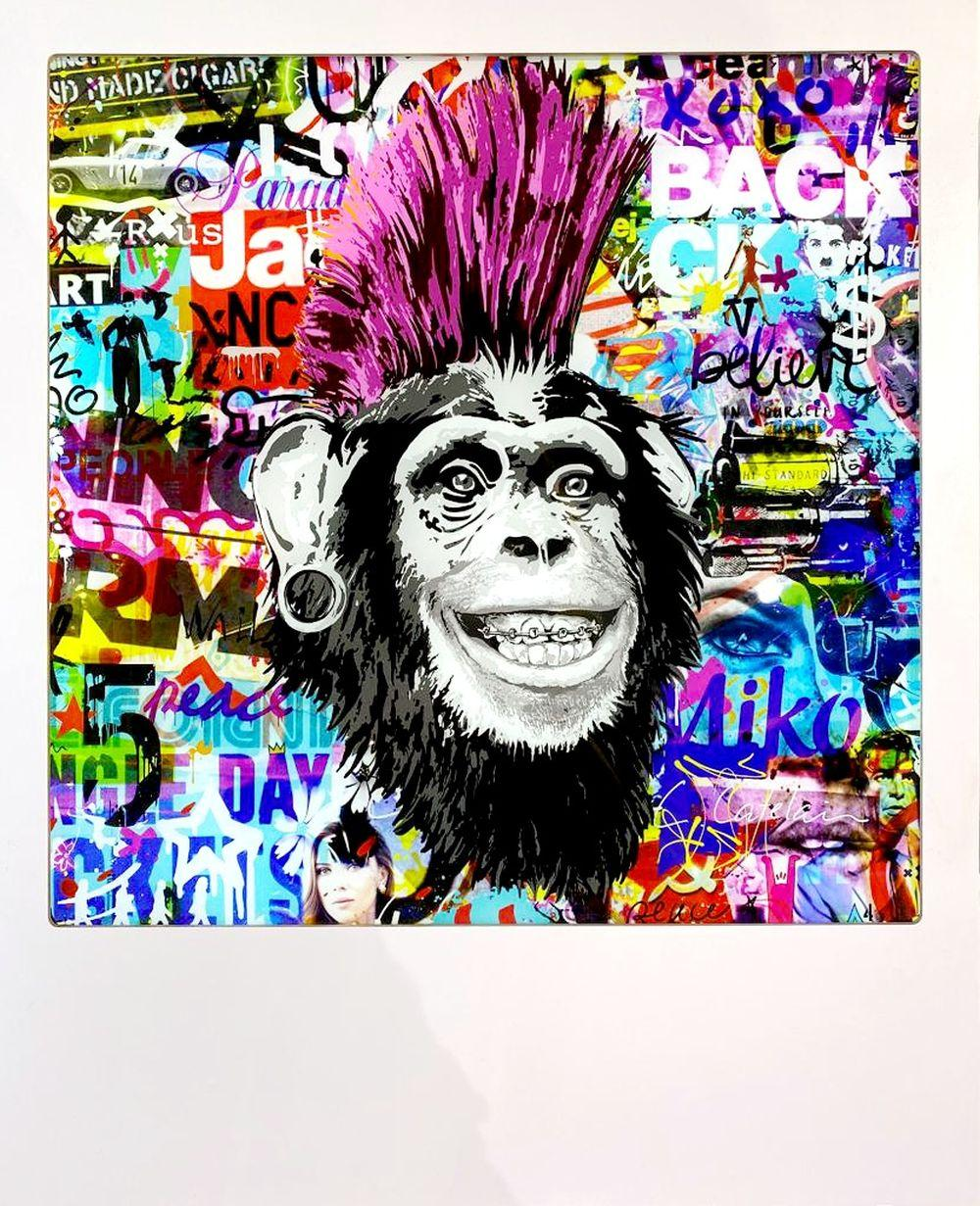 Christophe Catelain - Crazy Pink Monkey, 2019