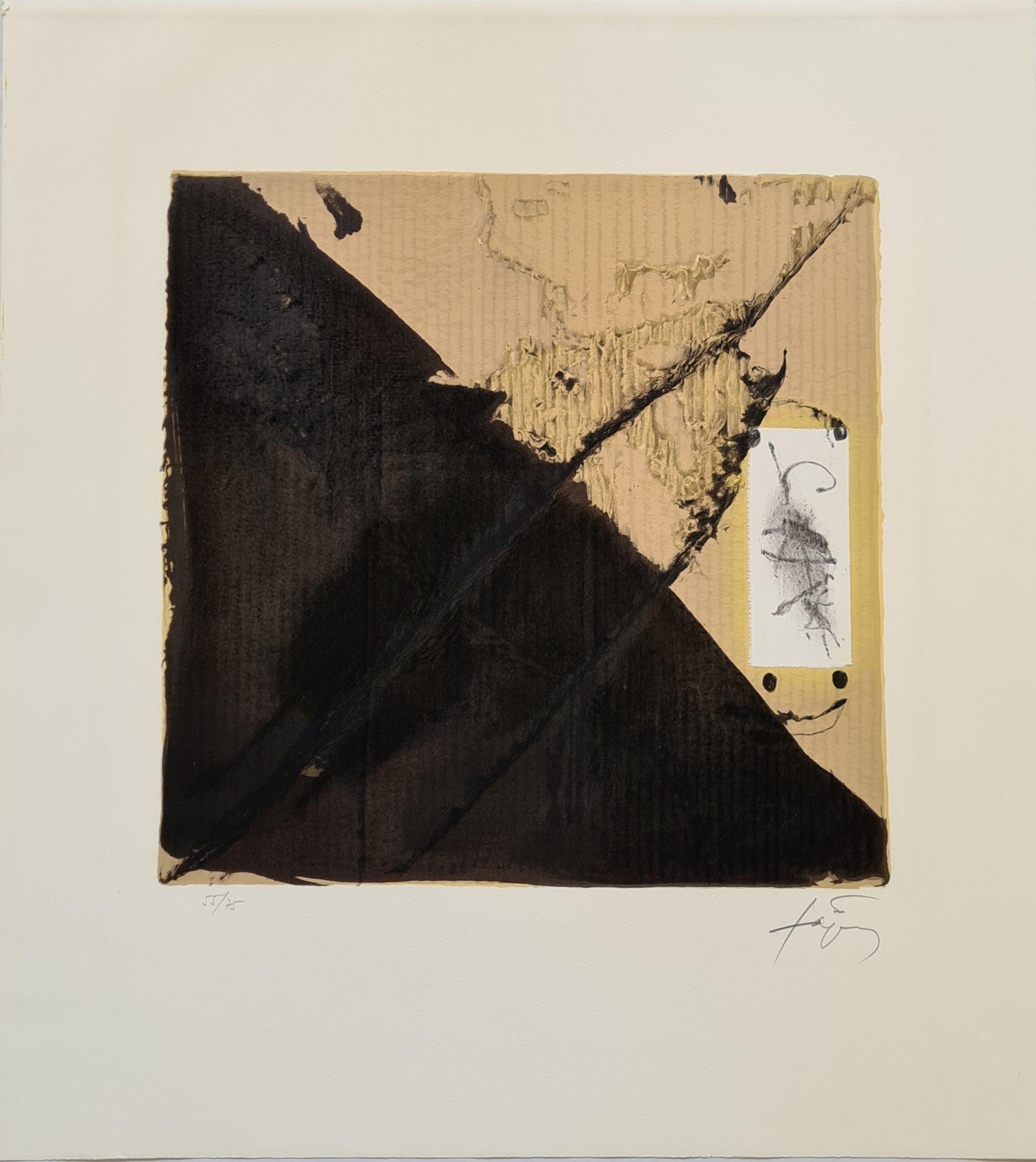 Antoni Tàpies - Noir et cartons, 1980